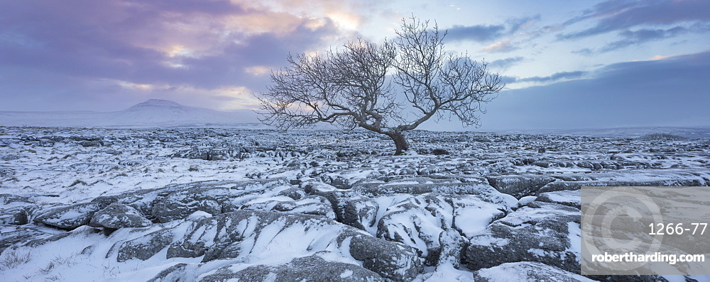 View to Ingleborough Hill from Twisleton Scar at sunrise in winter,Ingleton, Yorkshire Dales National Park, North Yorkshire, UK