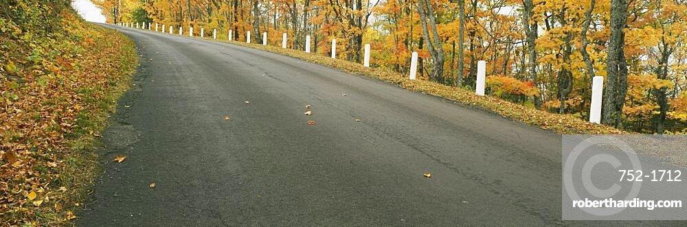 Trees on the roadside, Brockway Mountain Drive, Keweenaw County, Michigan, USA