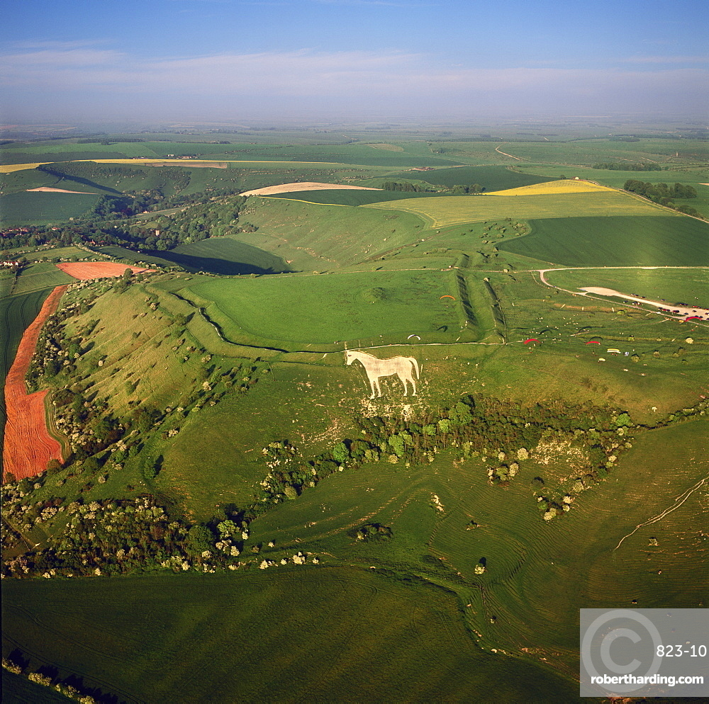 Aerial view of the Westbury White Horse and the Iron Age Bratton Camp Hill Fort, Wiltshire, England, United Kingdom, Europe