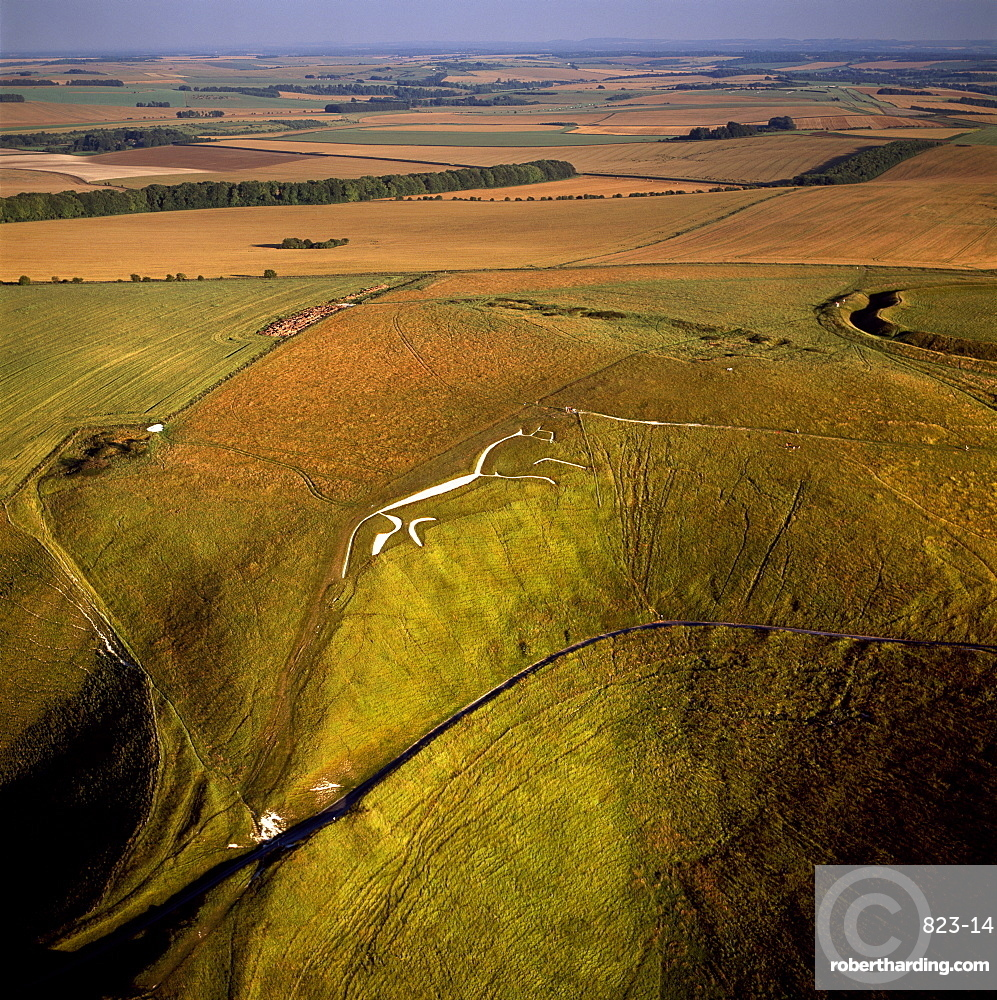 Aerial image of Uffington White Horse with Uffington Castle hill fort, Berkshire Downs, Vale of White Horse, Oxfordshire, England, United Kingdom, Europe
