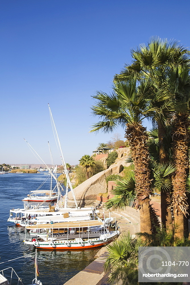 Gardens of Old Cataract Hotel, Aswan, Upper Egypt, Egypt, North Africa, Africa