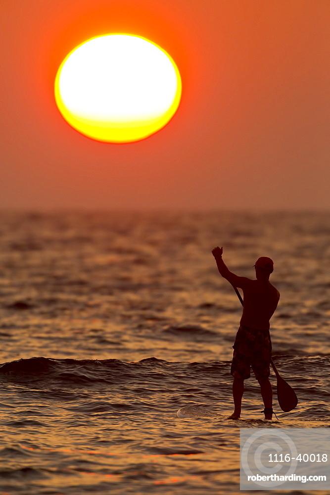 Stand up paddler at sunset, Kihei, Maui, Hawaii, United States of America