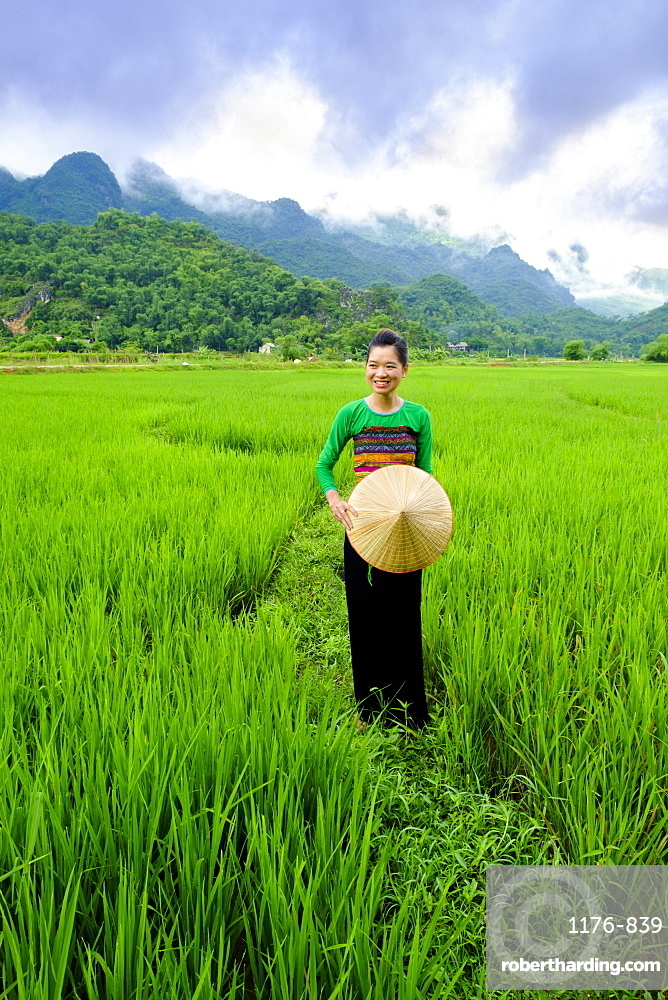Local White Tai indigenous woman in traditional clothing standing in rice fields, Mai Chau, Hoa Binh, Vietnam, Indochina, Southeast Asia, Asia