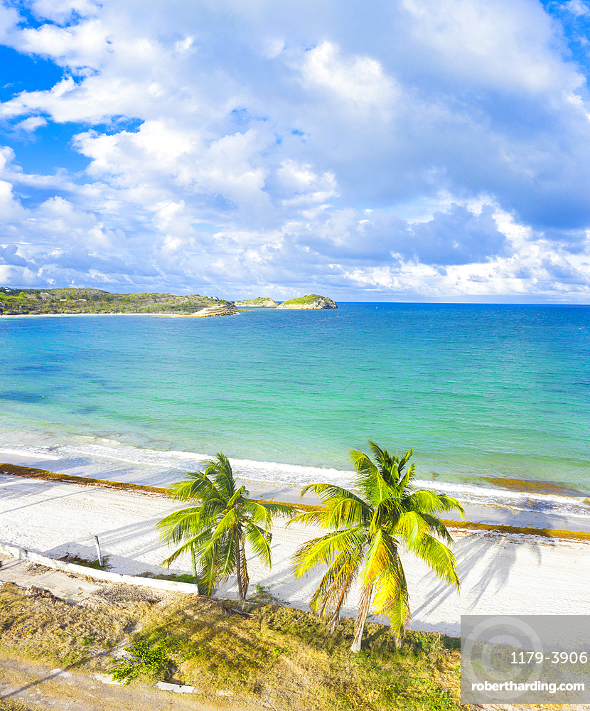 Aerial panoramic by drone of palm-fringed beach washed by Caribbean Sea, Antilles, West Indies, Caribbean, Central America