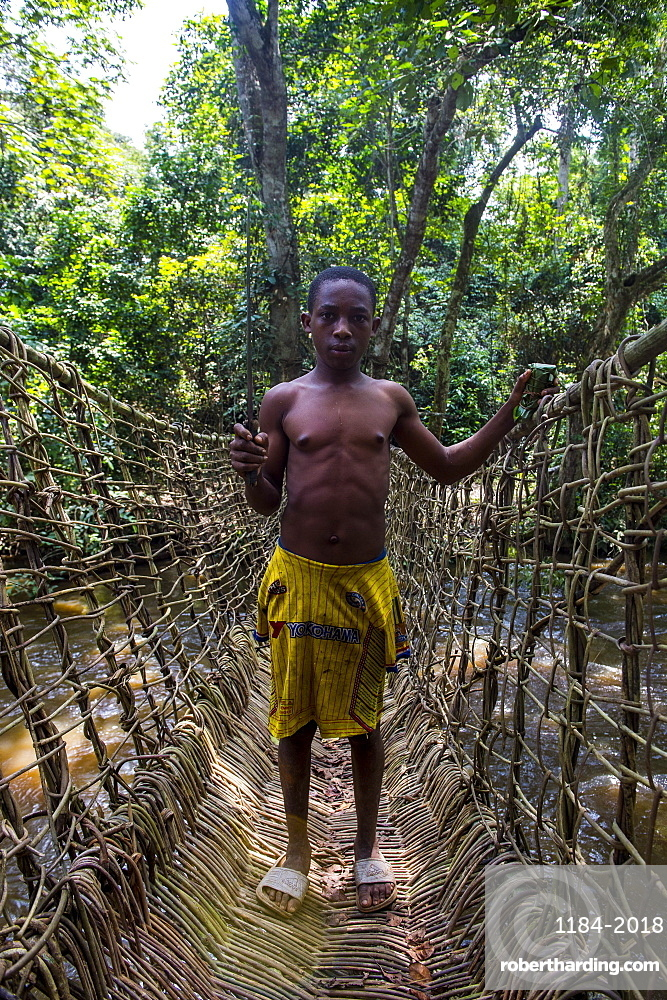 Pygmy man on a hand made vine bridge in the Dzanga-Sangha Park, UNESCO World Heritage Site, Central African Republic, Africa