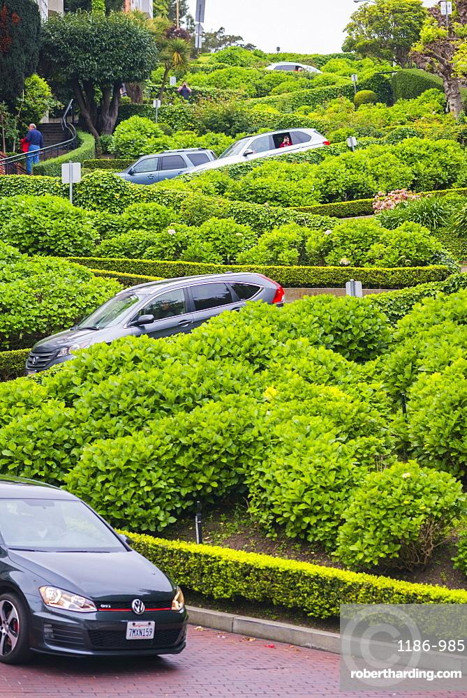 Lombard Street, San Francisco, California, United States of America, North America