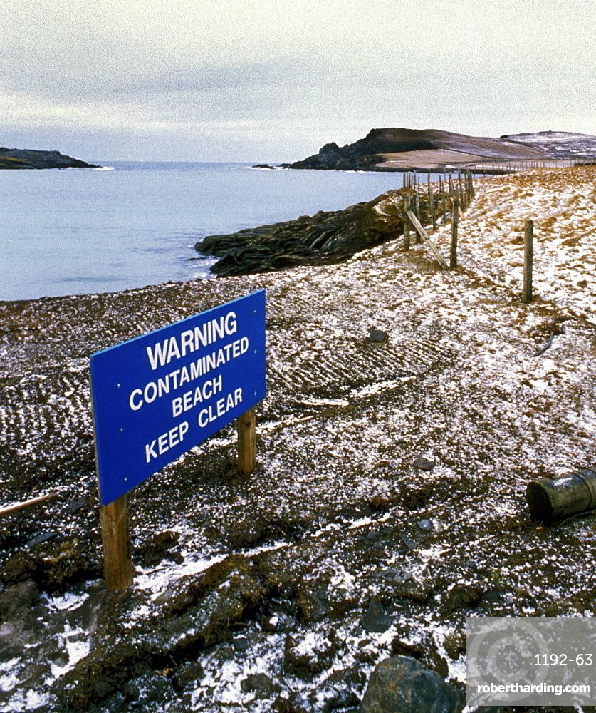 Contaminated beach, uk. Scotland, shetland islands. Shetland after braer 1993