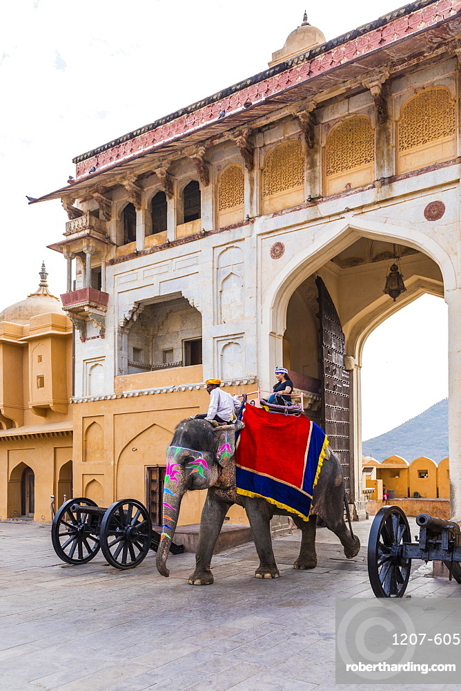 Elephants walking through the entrance gate at Amer Palace and Fort, Jaipur, Rajasthan, India, Asia,