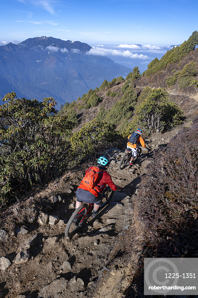 Mountain bikes speed past in a blur along a Enduro style single track trail in the Nepal Himalayas near the Langtang region, Nepal, Asia