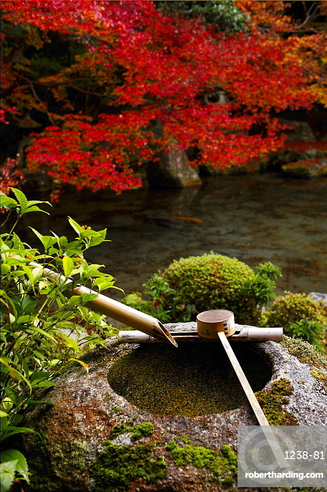 Tsukubai water basin in Renge-ji temple, Kyoto, Japan, Asia