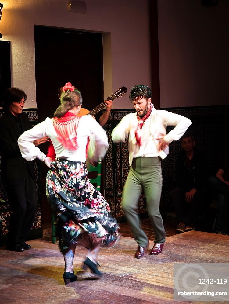 Flamenco dancers and musicians, La Casa del Flamenco, Seville (Sevilla), Andalucia, Spain, Europe