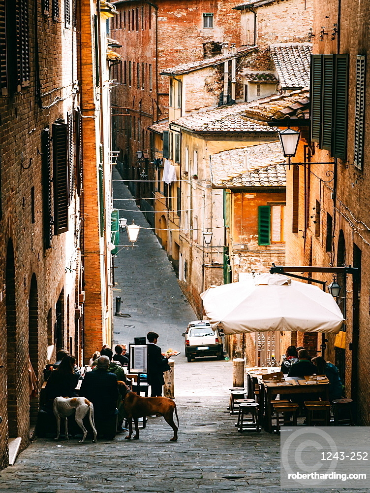 Small alleyway with quaint restaurant in Siena, Tuscany, Italy