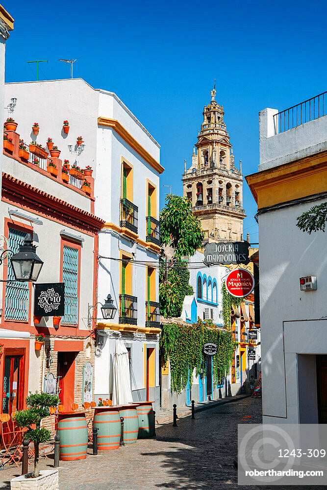 Pedestrian street in the historic centre of Cordoba, Andalucia, Spain with Bell Tower - La Mezquita / Great Mosque in background
