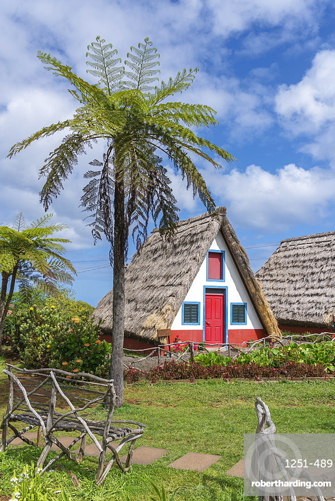Traditional house under a palm tree. Santana, Madeira region, Portugal.