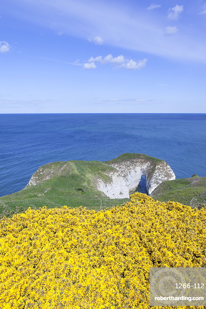 View out over the chalk arch to the North Sea from the path above Selwick Bay at Flamborough Head, Flamborough, East Yorkshire, Yorkshire, England, United Kingdom, Europe
