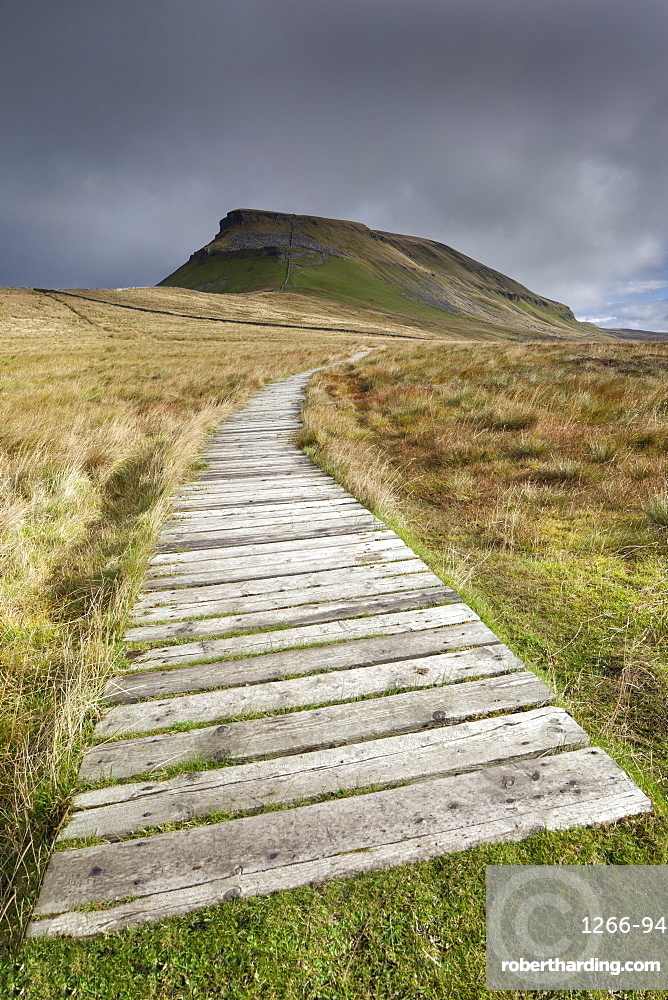 Boarded footpath leading to Pen-Y-Ghent Hill in the Yorkshire Dales, Yorkshire, England, United Kingdom, Europe