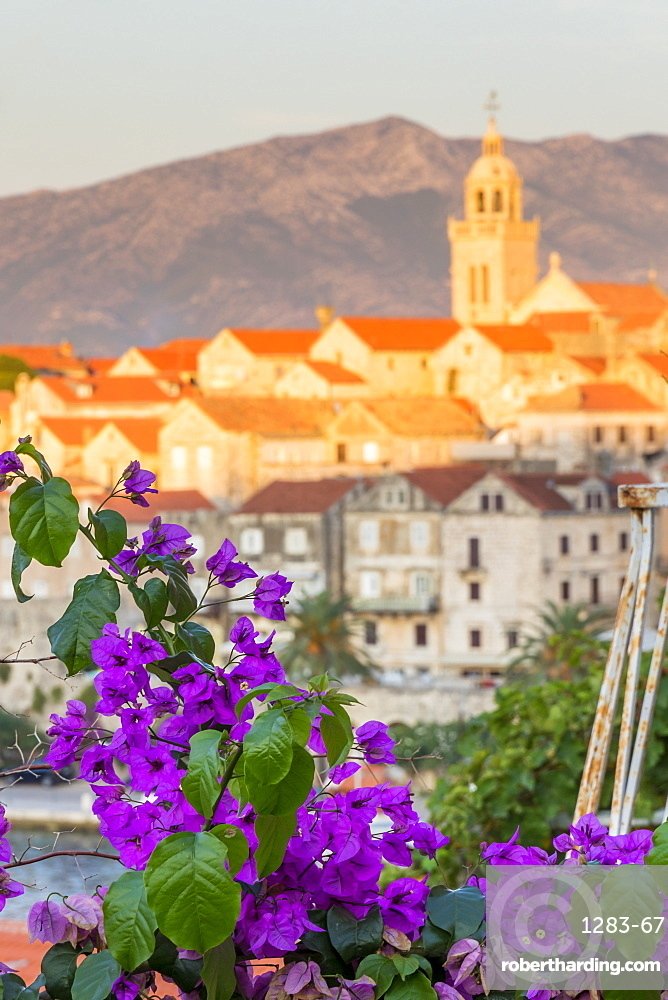 Elevated view to the old town of Korcula, Croatia, Europe