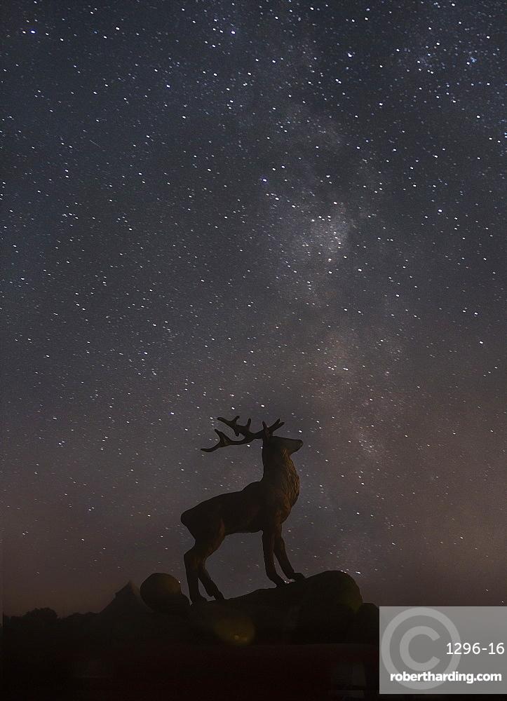 Star gazing, New Forest, Hampshire, England, United Kingdom, Europe