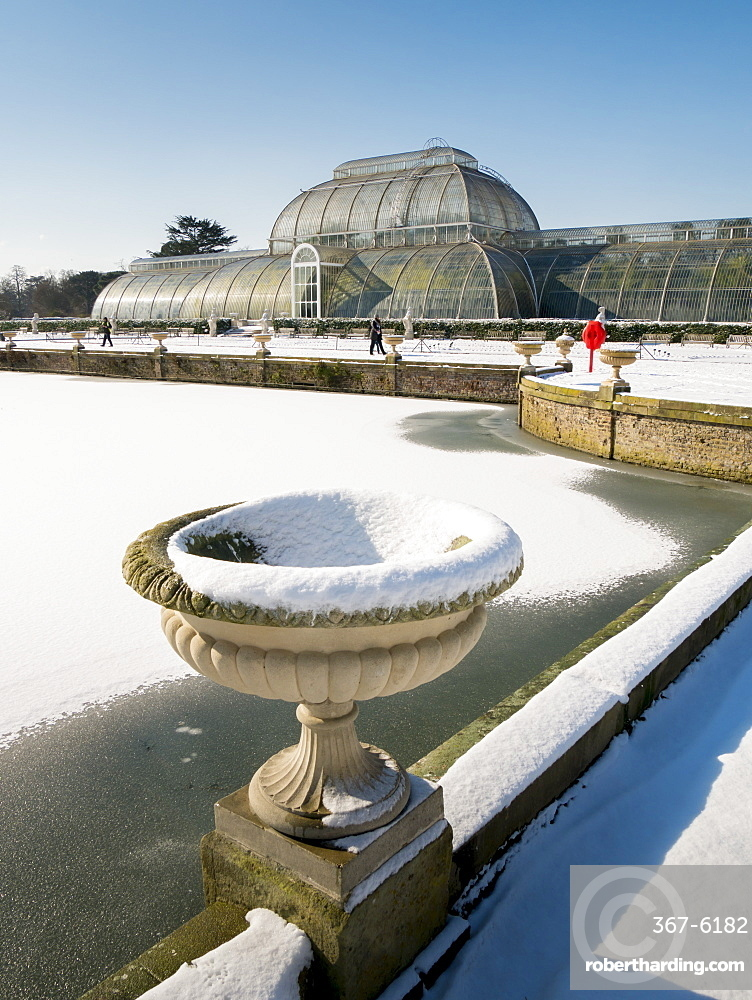 Palm House in winter, Kew Gardens, UNESCO World Heritage Site, London, England, United Kingdom, Europe