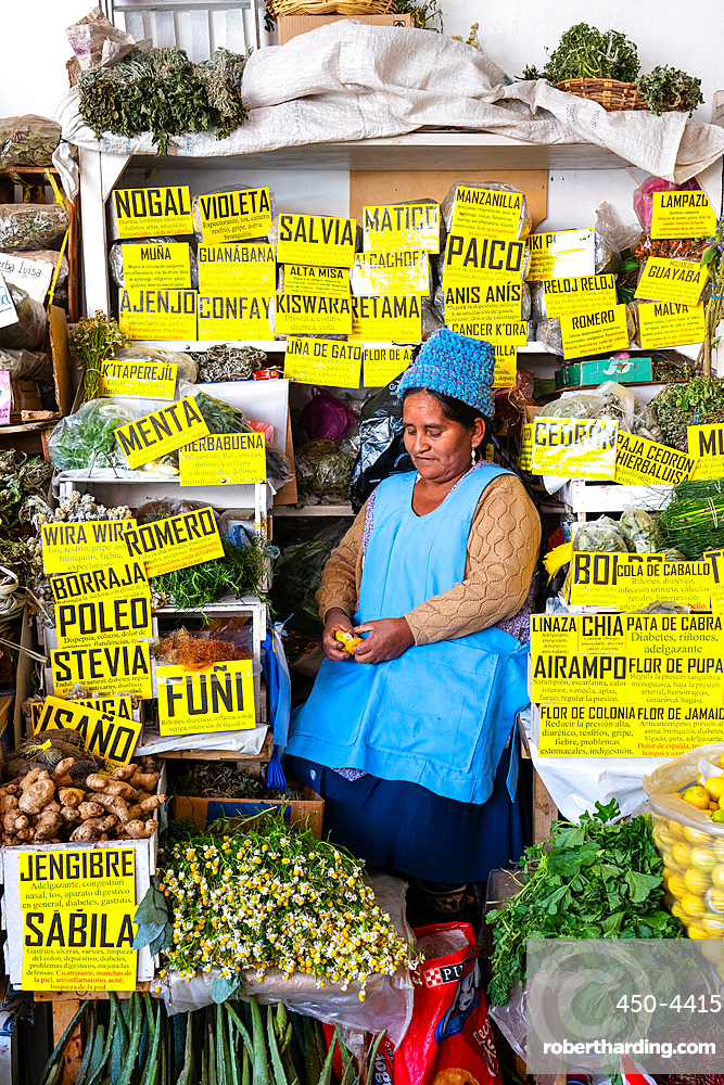 Stallholder surrounded by her herbal products in the main market, Sucre, UNESCO World Heritage Site, Bolivia, South America