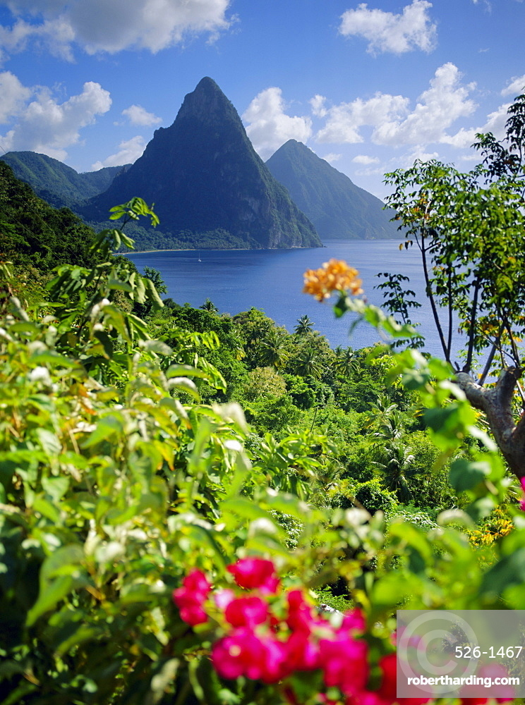 The Pitons, St. Lucia, West Indies *** Local Caption ***