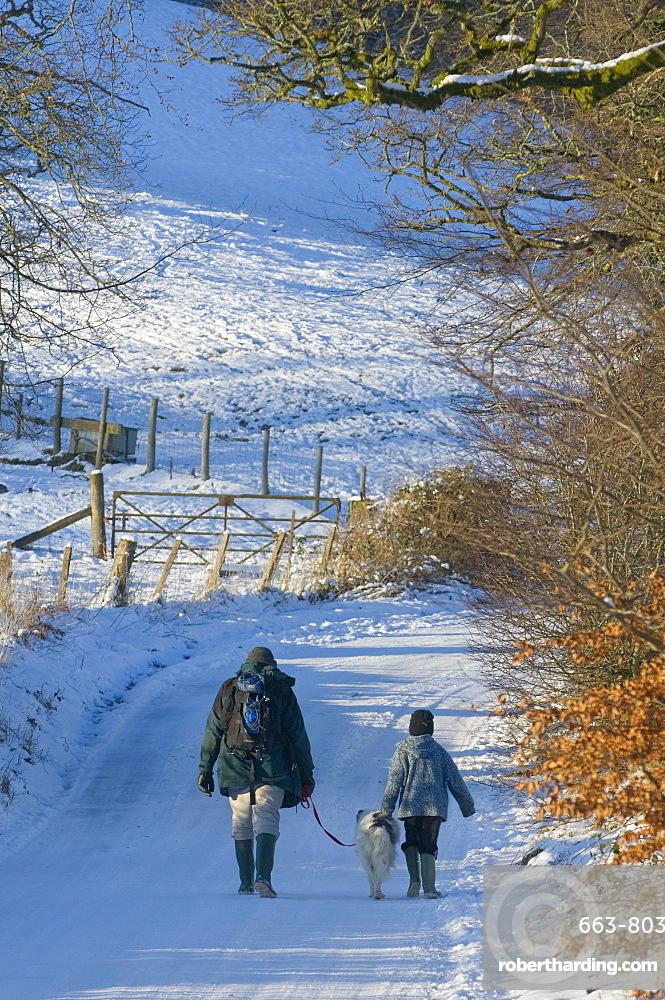 A man and boy with a dog walk along a snowy lane, Newbridge-on-Wye, Powys, Wales, United Kingdom, Europe