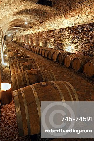 Contratto underground wine cathedral in Canelli, the barrels made by oak wood and named
