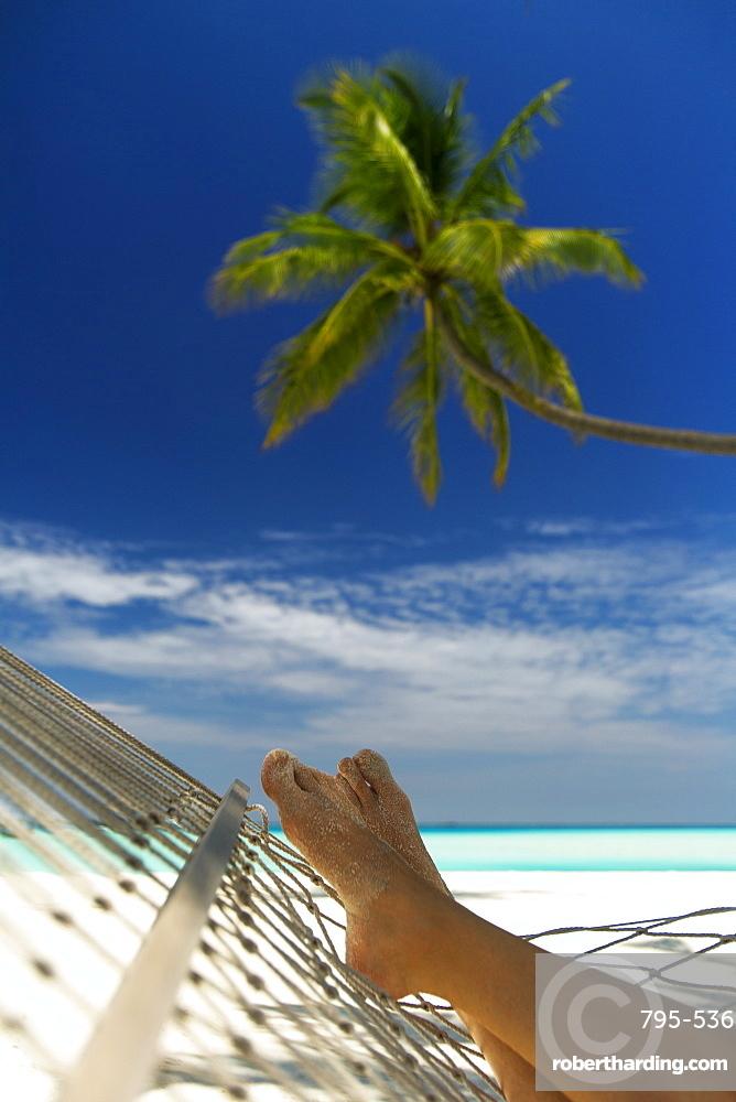 Hammock and palm tree, Maldives, Indian Ocean, Asia