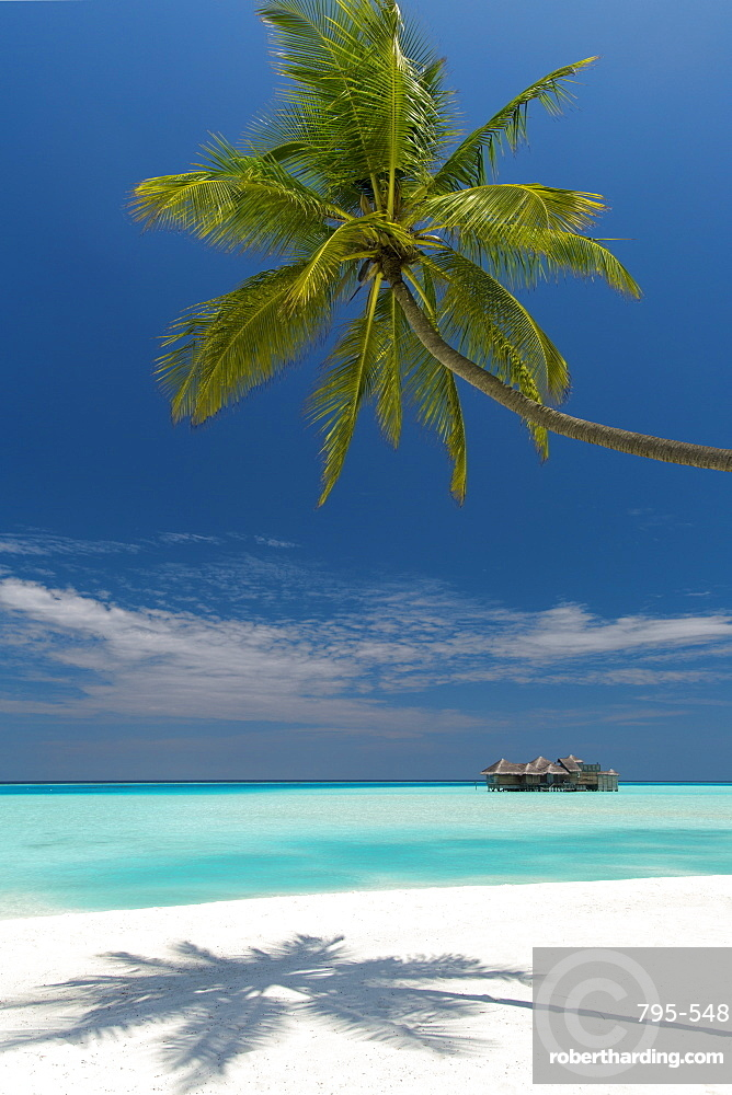 Luxury over-water bungalow at Gili Lankanfushi Resort Maldives and beach with palm trees, Maldives, Indian Ocean, Asia