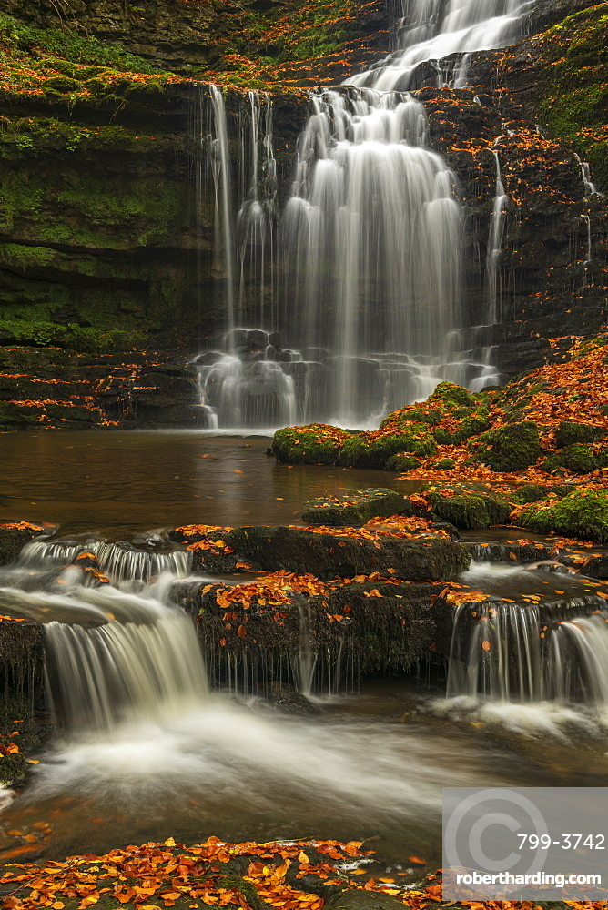 Scalebor Force waterfall in the Yorkshire Dales National Park, North Yorkshire, England. Autumn (October) 2018.