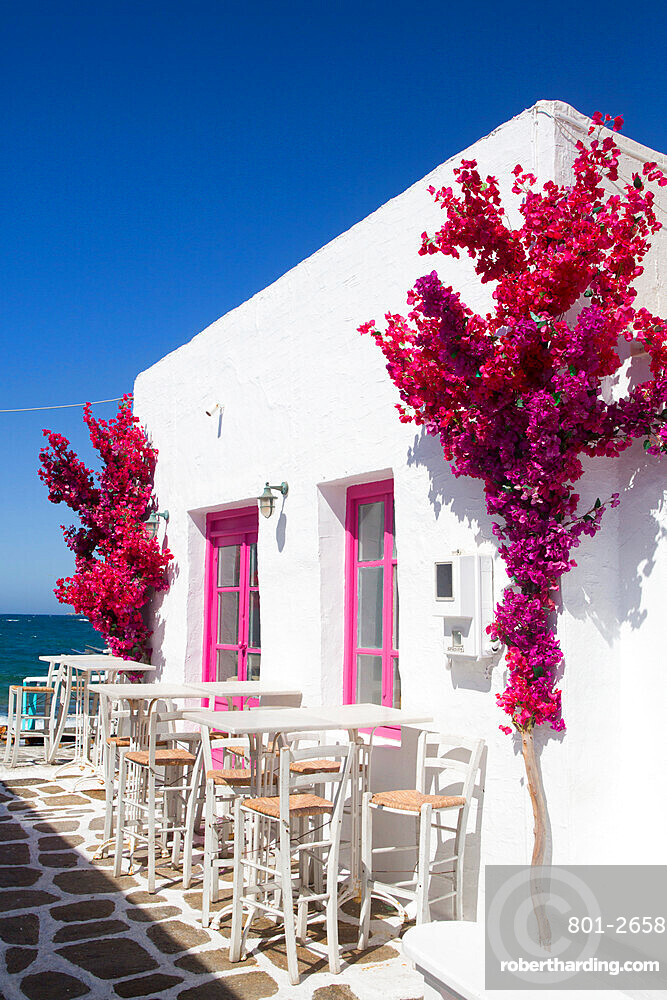Restaurant, Old Port of Naoussa, Paros Island, Cyclades Group, Greece