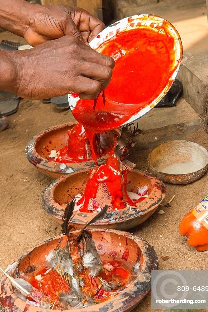 Voodoo ritual performed in Ouidah, | Stock Photo