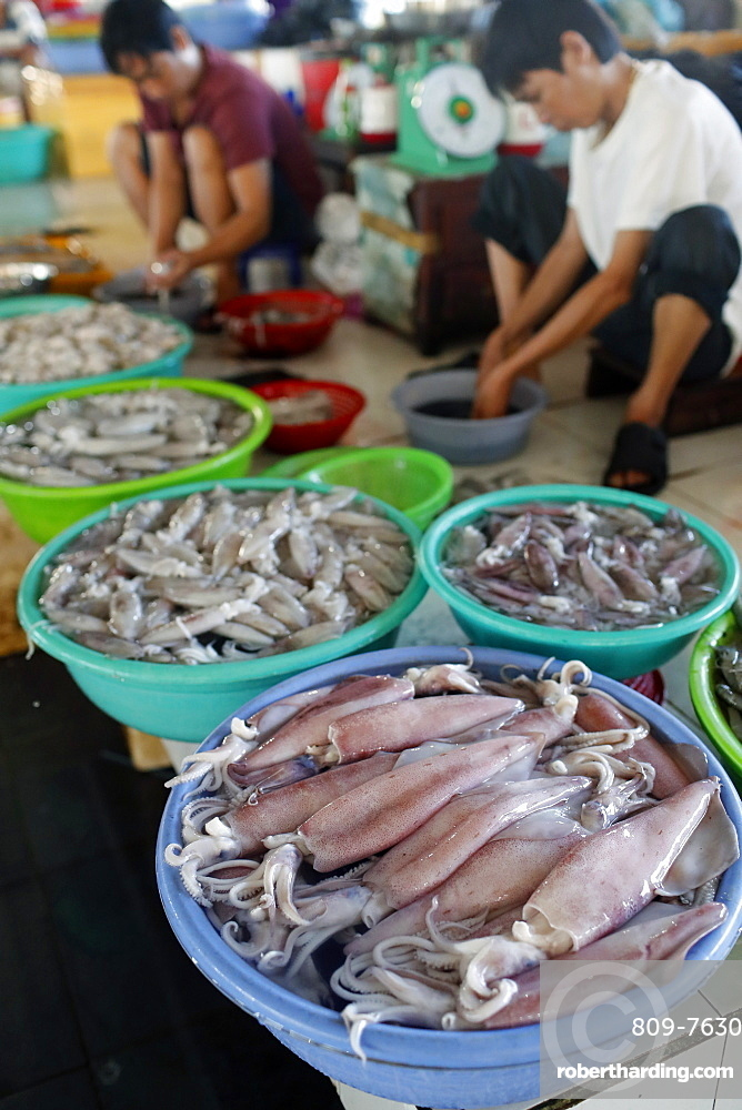Fish market, squids and shrimps for sale, Ha Tien, Vietnam, Indochina, Southeast Asia, Asia