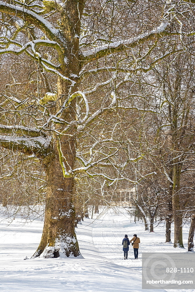 Green Park in the snow, London, England, United Kingdom, Europe
