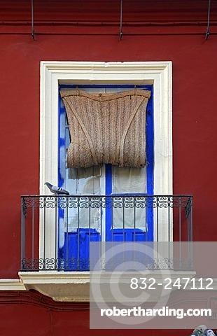Window and balcony in Cordoba, Andalusia, Spain, Europe