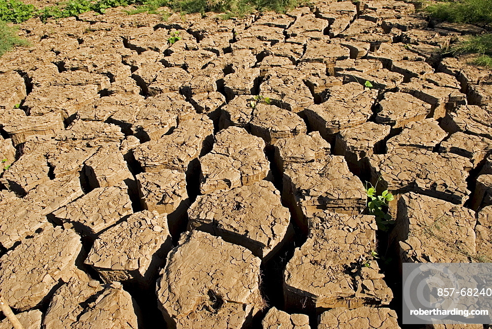 A drought is an extended period of months, or years, when a region notes a deficiency in its water supply. Generally, this occurs when a region receives consistently below average precipitation. It can have a substantial impact on the ecosystem and agriculture of the affected region.