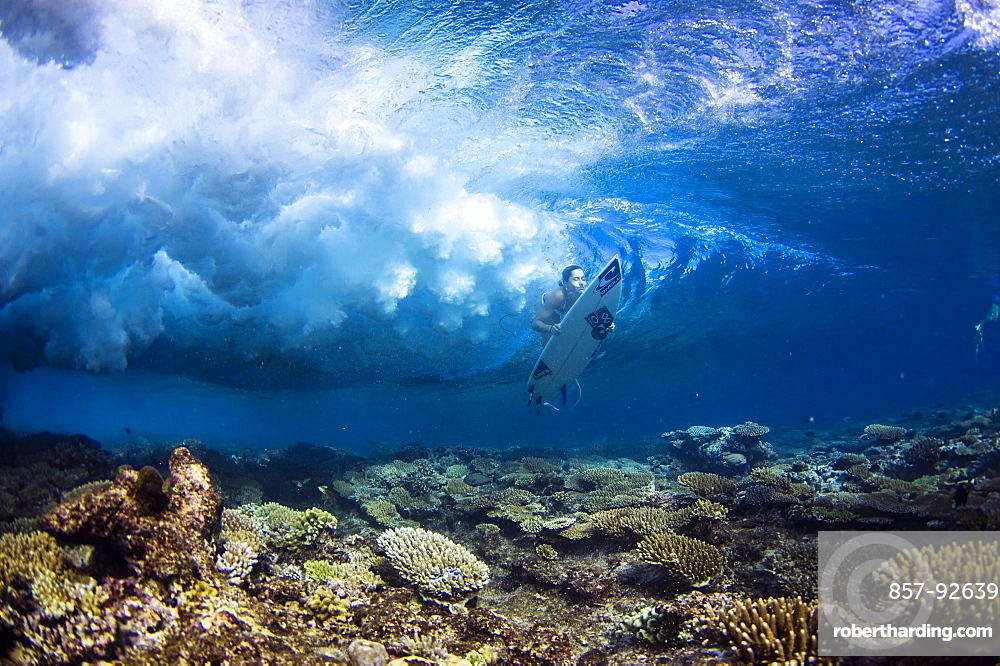 Professional surfer, Lucia Martiño, duck dives under a wave in the south atolls (Maldives)