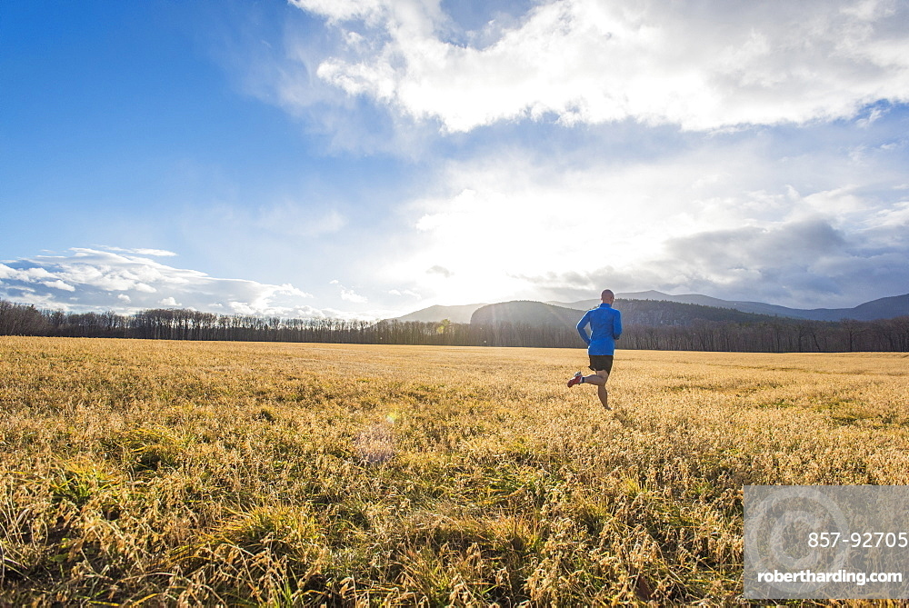 Runner in a blue shirt in a field with mountains in the background