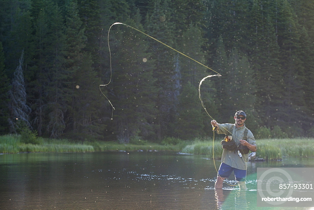 Man Fly Fishing At Truckee River, Nevada, Usa