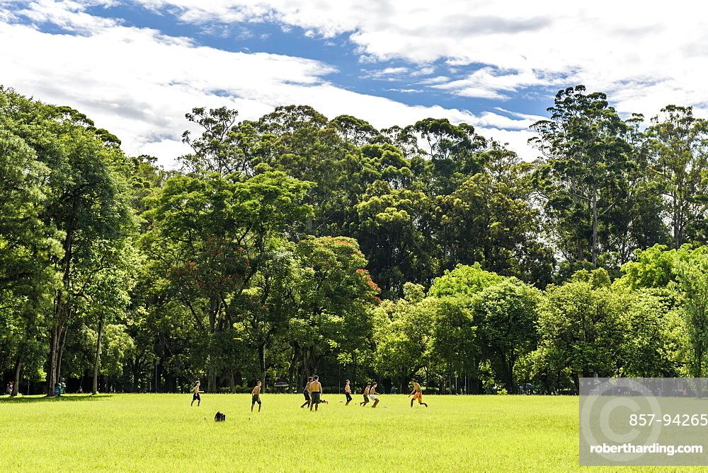 Parque Ibirapuera (Ibirapuera Park) in central São Paulo, Brazil