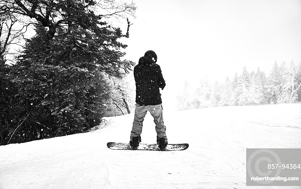 Black and white image of a snowboarder stopped on the edge of a trail.
