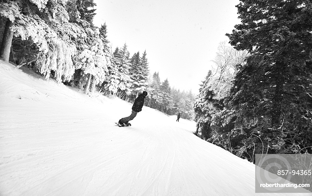A snowboarder riding down a trail at Killington, VT.