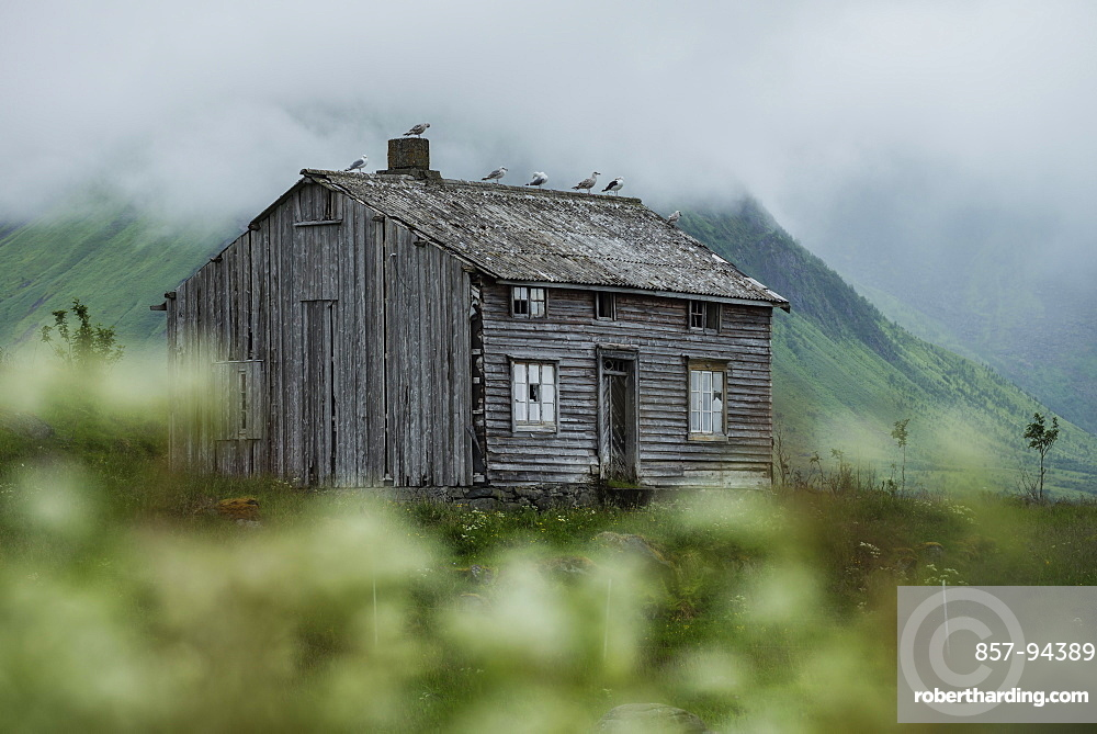 Abandoned house, Vestvågøy, Lofoten Islands, Norway