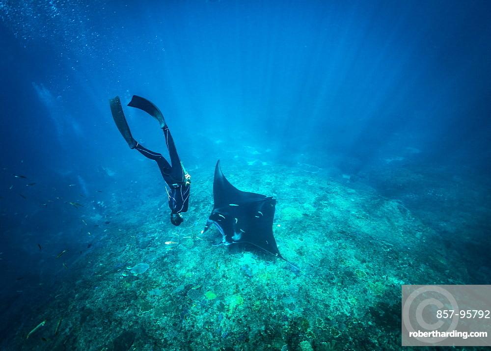 Diving with mantas, Nusapenida, Bali, Indonesia
