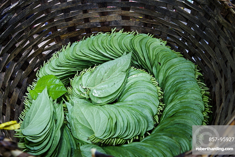 A basket of leaves are organized in a traditional manner near Inle Lake, Myanmar