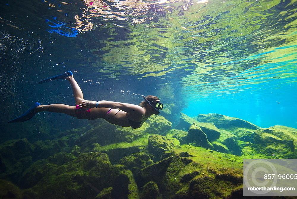 Side?view shot of woman in bikini snorkeling,?Cenote?el Eden, Riviera Maya,?Playa?del?Carmen,?Quintana?Roo,?Mexico