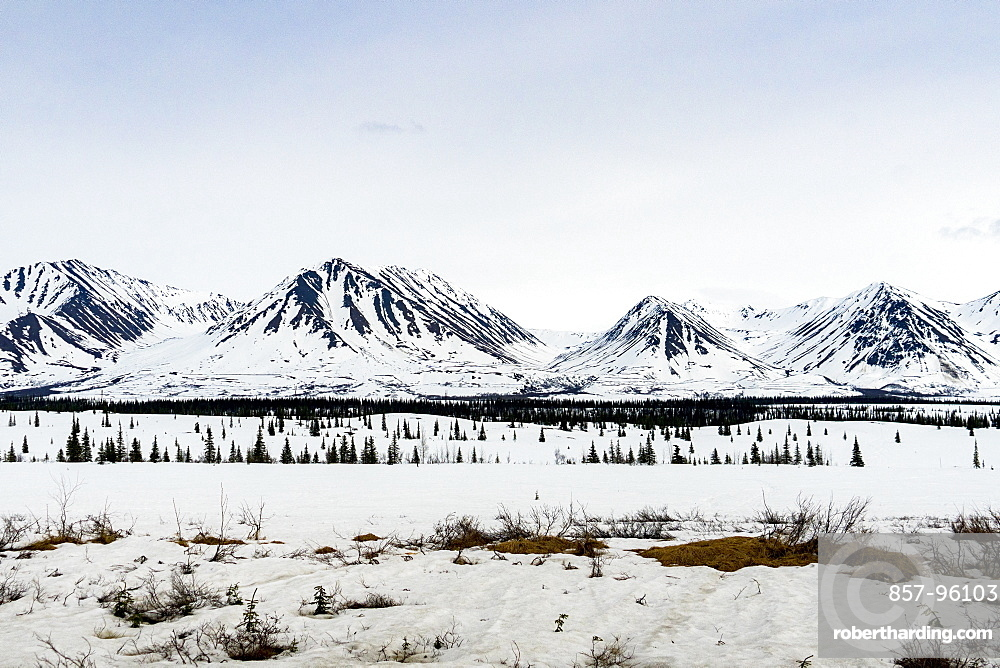 Beautiful winter scenery with view of snowcappedmountains in Denali National Park, Alaska, USA