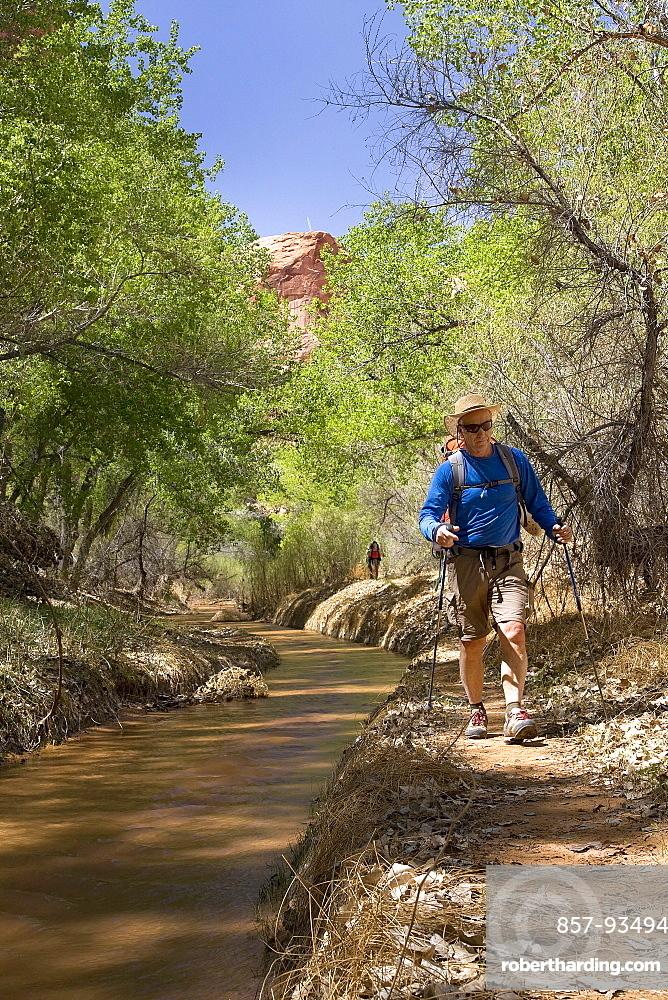 Male Hiker Hiking In In Coyote Gulch, Colorado