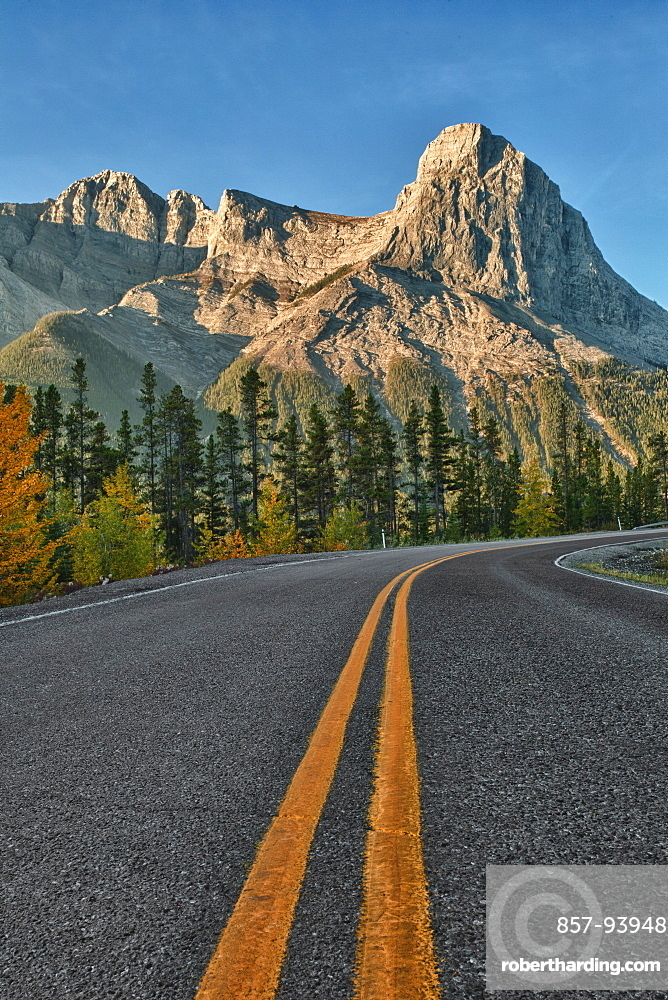 Road leads into mountains, summer