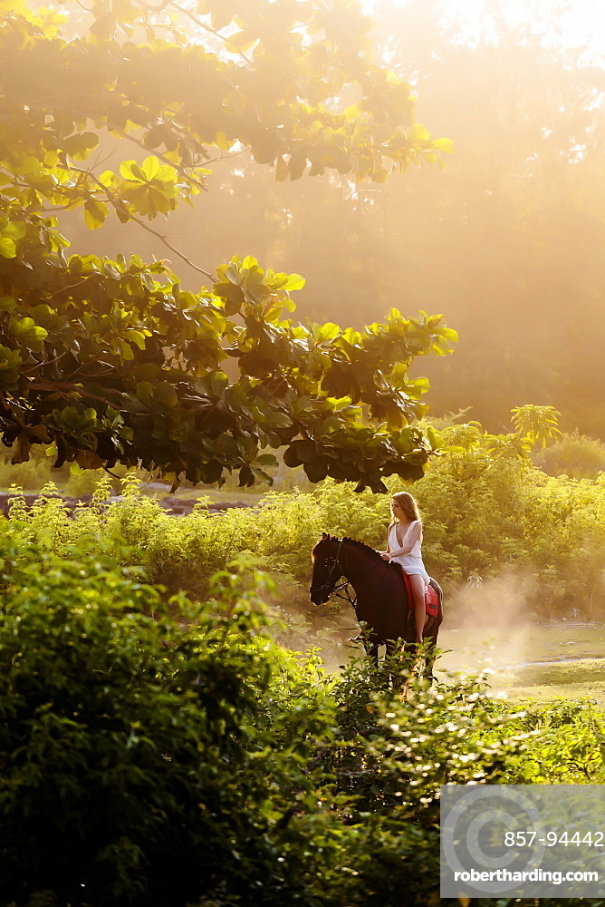 Young woman riding horse in scenery with trees and bushes at sunrise